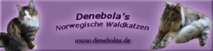 Denebola`s